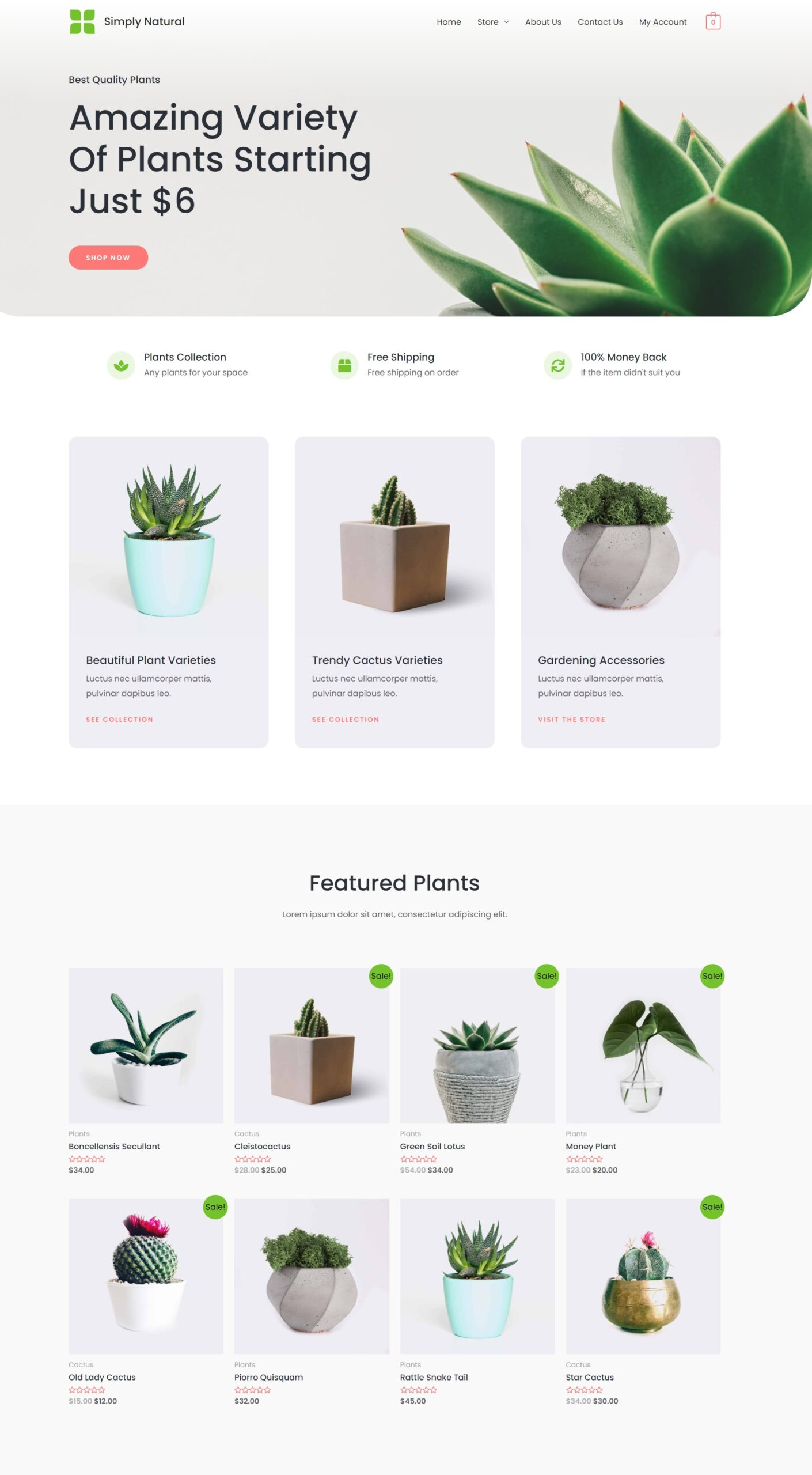 ecommerce website page
